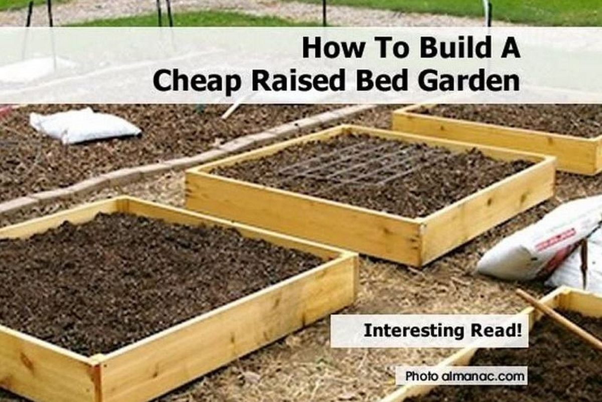 How to build a cheap raised bed garden for How to make a cheap bed frame