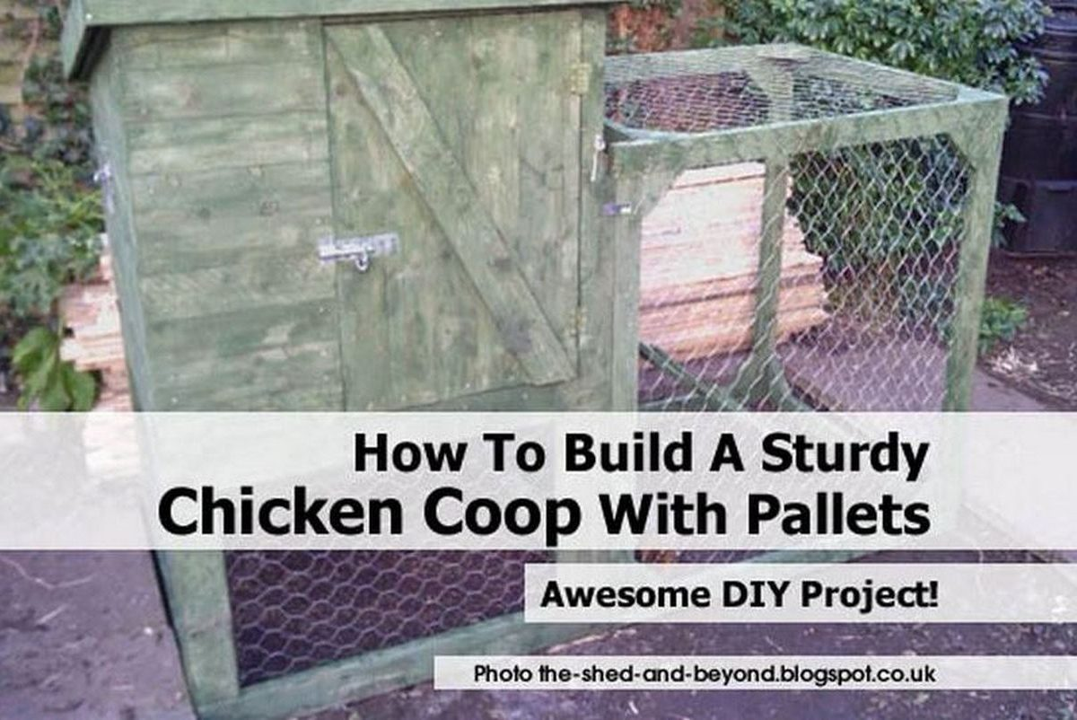 How to build a sturdy chicken coop with pallets for How to build a chicken coop from wooden pallets