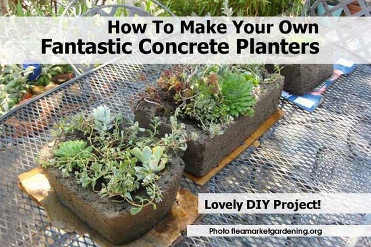 How To Make Your Own Fantastic Concrete Planters
