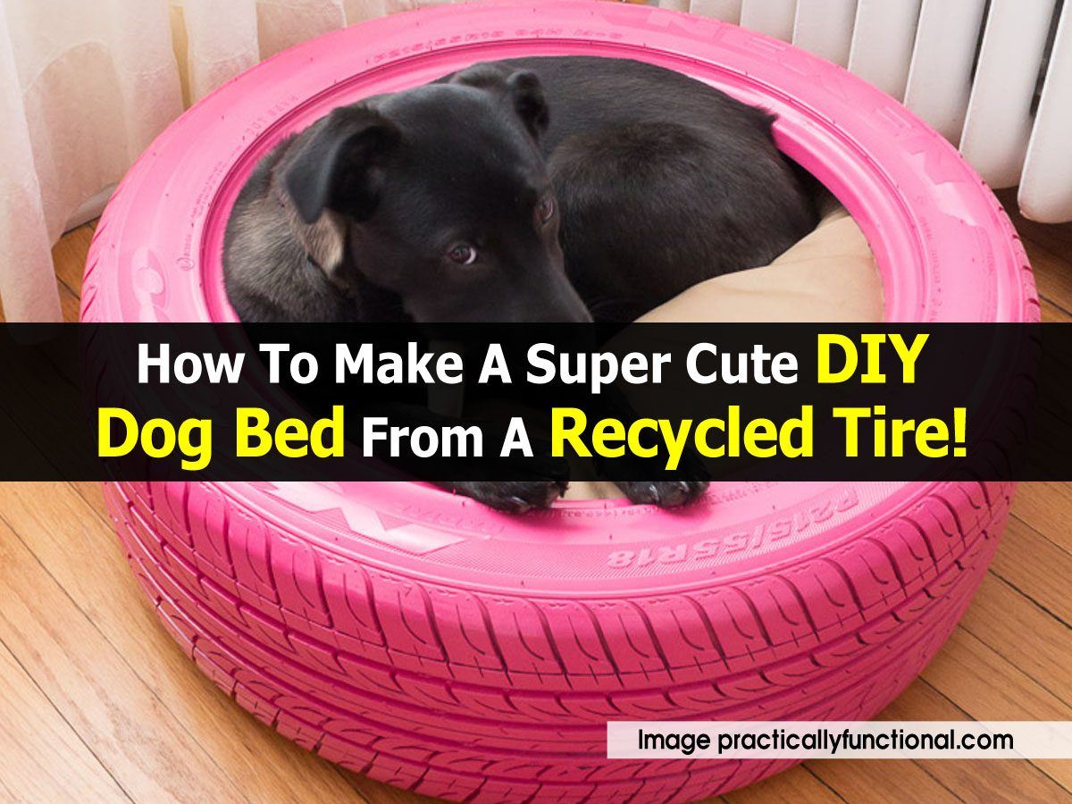 How To Make A Super Cute Diy Dog Bed From A Recycled Tire