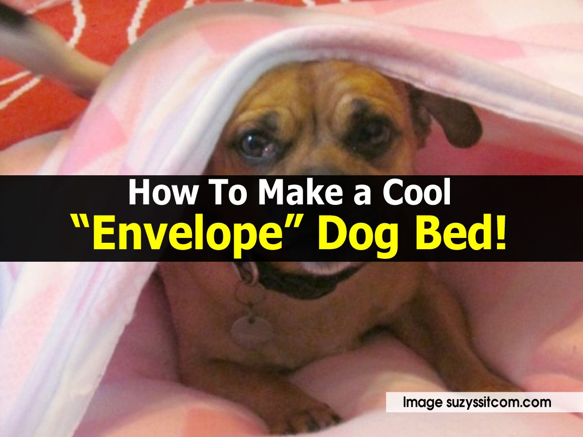 "How To Make a Cool ""Envelope"" Dog Bed!"