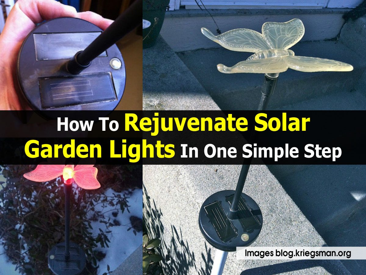 How To Rejuvenate Solar Garden Lights In One Simple Step