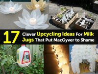 17 Clever Upcycling Ideas For Milk Jugs That Put MacGyver to Shame
